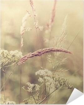 Kesän niitty Itsestäänkiinnittyvä Juliste