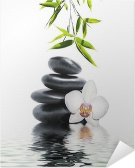 Valkoinen orkidea kukka loppuun bambusta Itsestäänkiinnittyvä Juliste