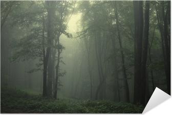Vihreä metsän sateen jälkeen Itsestäänkiinnittyvä Juliste