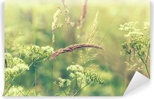 Kukkiva niitty Itsestäänkiinnittyvä Valokuvatapetti