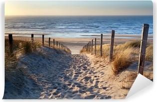 Polku pohjoisenmeren rannalle kulta auringonpaisteessa Itsestäänkiinnittyvä Valokuvatapetti