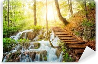 Syvä metsävirta kristallivedellä. plitvice-järvet, kroatia Itsestäänkiinnittyvä Valokuvatapetti