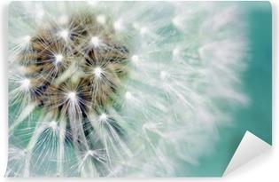 Voikukka pörröinen siemenet sininen Itsestäänkiinnittyvä Valokuvatapetti