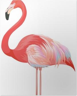 Flamingo Juliste