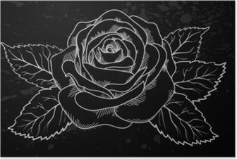 Kaunis valkoinen ruusu ääriviivat harmaita kohtia mustalla taustalla Juliste