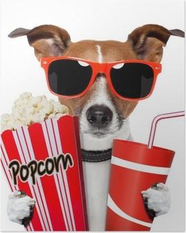 Koira katsomassa elokuvaa Juliste