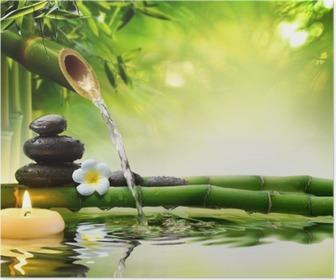 Kylpylä kivi puutarhassa virtaavalla vedellä Juliste
