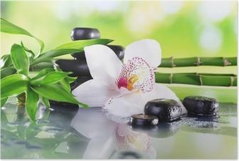 Kylpyläkivet, bambun oksat ja valkoinen orkidea Juliste