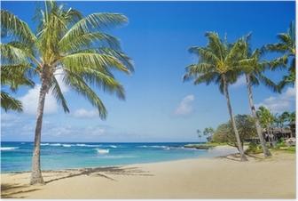 Palmuja hawaiin hiekkarannalla Juliste