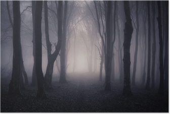 Polku tumman metsän läpi yöllä Juliste