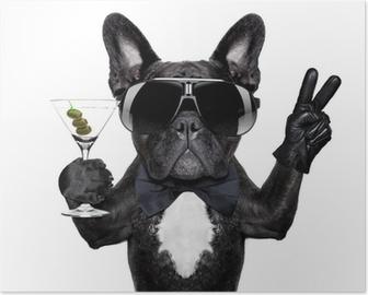 Rauhan cocktail koira Juliste