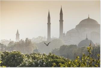 Sultanahmet camii / sininen moskeija, istanbul, turkki Juliste