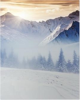 Talvi Juliste