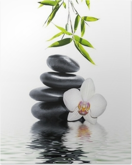 Valkoinen orkidea kukka loppuun bambusta Juliste
