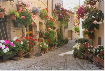 Vicolo con fiori, spello Juliste