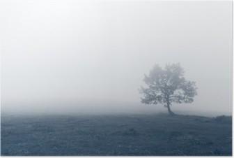 Yksinäinen puu sumuilla Juliste