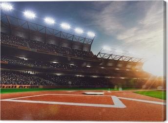 Ammatillinen baseball grand areena auringonvalossa Kangaskuva