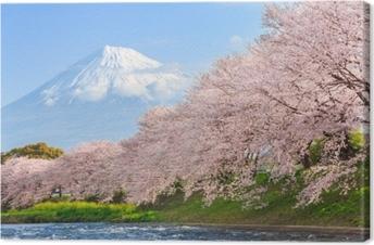 Cherry blossoms tai sakura ja mountain fuji taustalla Kangaskuva