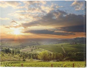 Chianti viinitarhan maisemaa toscanassa, italiassa Kangaskuva