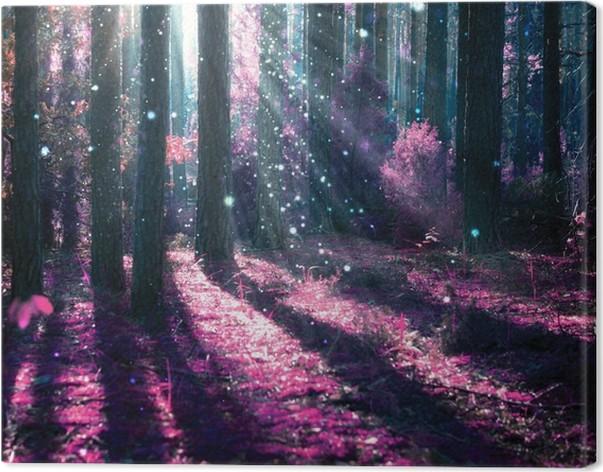 Fantasiamaisemaa. salaperäinen vanha metsä. Kangaskuva - iStaging