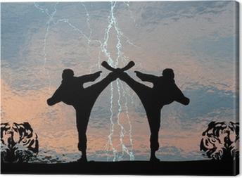 Karatethunder Kangaskuva