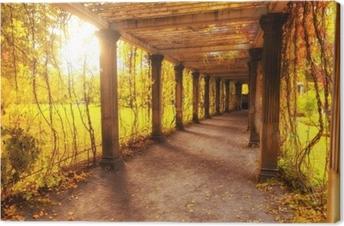 Kaunis syksy puisto Kangaskuva