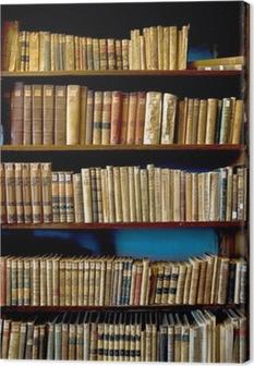 Kirjoja kirjastossa Kangaskuva