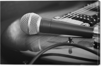 Kitara ja mikrofoni Kangaskuva