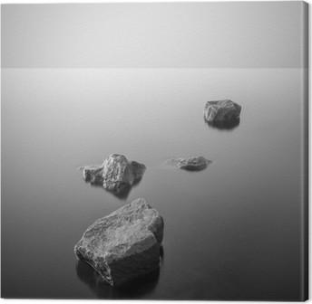 Minimalistinen sumuinen maisema. mustavalkoinen. Kangaskuva