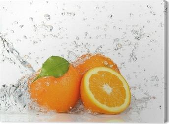 Oranssi hedelmiä ja roiskeita vettä Kangaskuva