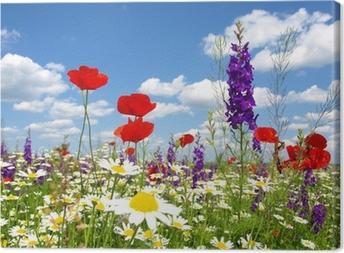 Punainen unikko ja luonnonvaraiset kukat Kangaskuva