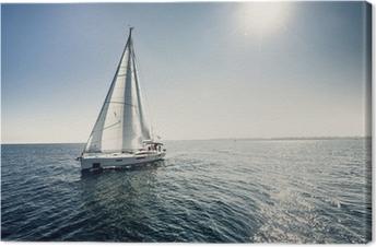 Purjealusveneitä valkoisilla purjeilla Kangaskuva