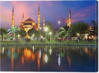 Sininen moskeija istanbulissa, turkki Kangaskuva