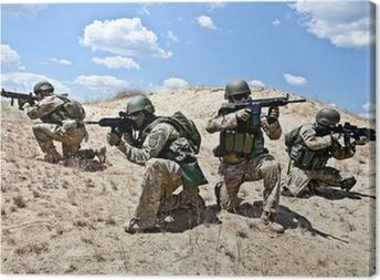 Sotilastoimintaa Kangaskuva