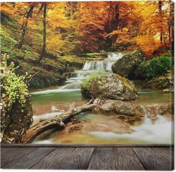 Syksy puro metsässä keltaisia puita Kangaskuva