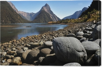 Uusi-Seelanti fiordland Kangaskuva
