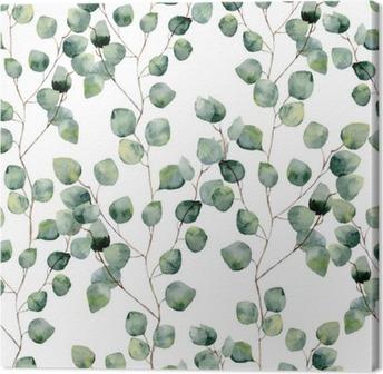Vesiväri vihreä kukka saumaton malli eukalyptus pyöreät lehdet. käsinmaalattu kuvio oksat ja lehdet hopea dollari eukalyptus eristetty valkoisella pohjalla. suunnittelua tai taustaa varten Kangaskuva