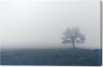 Yksinäinen puu sumuilla Kangaskuva