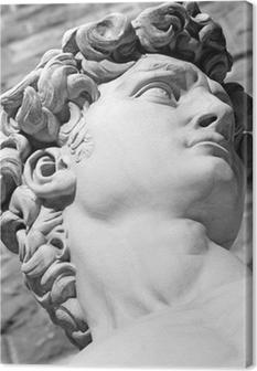 Yksityiskohta kuuluisan italialaisen veistoksen - david by michelangelo, bl Kangaskuva