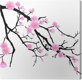 Ast mit kirschblüten Kangastuloste
