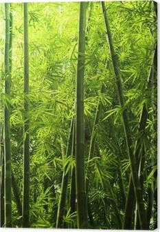 Bamboo metsä Kangastuloste