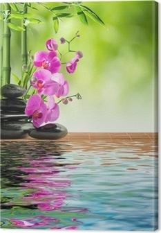 Pinkki orkidea musta kivi ja bambu veteen Kangastuloste