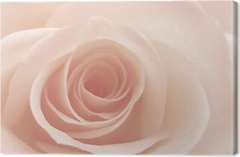 Rose Kangastuloste