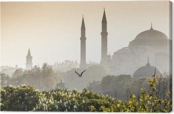 Sultanahmet camii / sininen moskeija, istanbul, turkki Kangastuloste