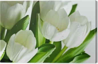 Valkoiset tulppaanit Kangastuloste