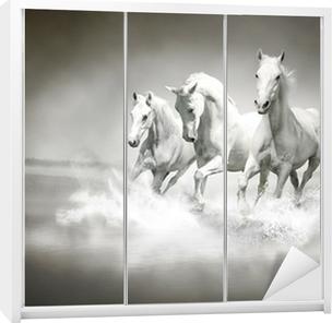 Kaststicker Kudde witte paarden die door water