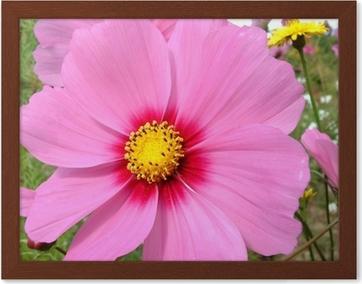 Canvas Fleur Rose Pixers We Leven Om Te Veranderen