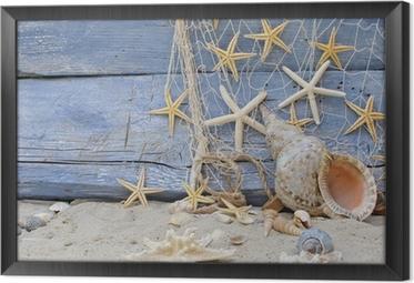 Urlaubserinnerung: posthornschnecke, seesterne und fischernetz Kehystetty kangaskuva