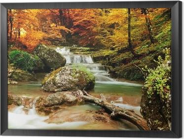 Syksy puro metsässä keltaisia puita Kehystetty Kangas