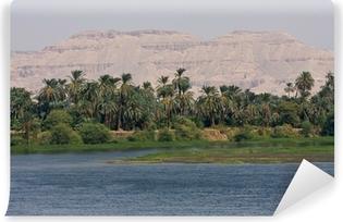 Kendinden Yapışkanlı Duvar Resmi Bir Nil nehri bankası, Mısır